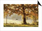 Autumn Comes to Cove Lake