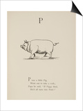 Pig Illustrations and Verse From Nonsense Alphabets by Edward Lear