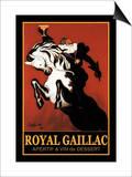 Royal Gaillac - Henry Iv