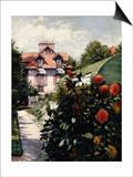 Dahlias  Petit Gennevilliers Garden