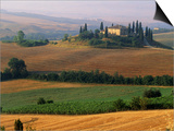 Italy  Tuscany  Val d'Orcia  fields at sunrise