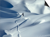 Snowboarder Riding in Powder Snow  Austria  Europe