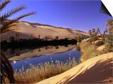 Oasis at Um Al Ma salt lake  Sahara desert  Ubari  Libya