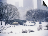 Snow over Central Park in New York