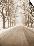 Peaceful Country Road in Rural Michigan