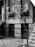 Brownstones by Brett Weston