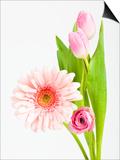 Pink Gerbera daisy  tulip and ranunculus