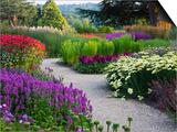 Path in Trentham Gardens