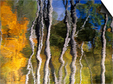 Autumn Reflections in Kilbear Provincial Park  Ontario  Canada