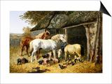 Farmland Friends
