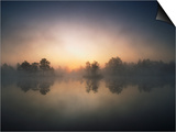 Morning Mist and Sunrise along Wetlands