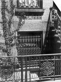 Brownstone Windows  Manhattan  1944