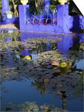 Villa Reflexion  Jardin Majorelle and Museum of Islamic Art  Marrakech  Morocco