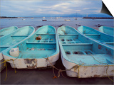 Turquoise Fishing Boats in Fishing Village  North of Puerto Vallarta  Colonial Heartland  Mexico