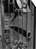 Door  New York  1943