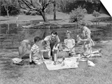 1950s Family with Collie Dog Picnicking in Park by Pond