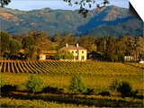 Estate and Vineyard  Napa Valley  California