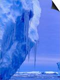 Blue Icebergs  Antarctica