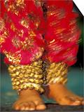 Indian Cultural Dances  Port of Spain  Trinidad  Caribbean