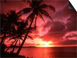 Palms And Sunset at Tumon Bay  Guam