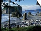 Ruby Beach  Olympic National Park  Washington  USA