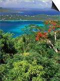 Magens Bay  St Thomas  Caribbean