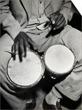 Man Playing the Bongo Drums