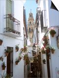Calleja De Las Flores (Flower Alley)  Spain