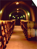 Wine Cave at the Pine Ridge Winery on the Silverado Trail  Napa Valley  California  USA