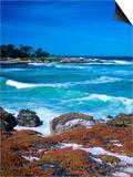 Beach  California  USA