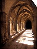 Cloister Detail  Arles  Cloitre St-Trophime  Bouches-Du-Rhone  Provence  France