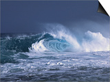 Waves on the North Shore of Oahu  Hawaii  USA