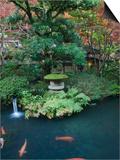 Japanese Garden  Tokyo  Japan