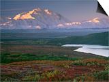 Denali National Park near Wonder lake  Alaska  USA