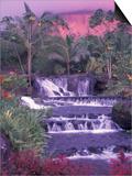 Tabacon Hot Springs  Arenal Volcano  Costa Rica
