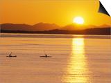 Kayaking at Sunset  San Juan Islands  Washington  USA