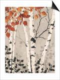 Birch Tapestry
