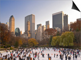 Wollman Icerink at Central Park  Manhattan  New York City  USA