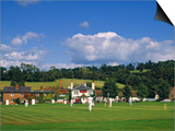 Cricket on Village Green  Surrey  England