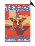 Texas  The Lone Star State  Longhorn Bull