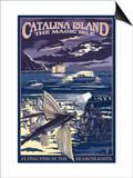 Catalina Island  California - Flying Fish