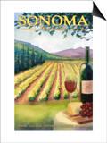 Sonoma County  California Wine Country