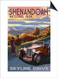 Shenandoah National Park  Virginia - Skyline Drive