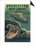 Charleston  South Carolina - Alligators Scene
