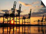 Harbour Cranes  Tacoma  Washington