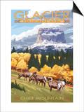 Chief Mountain and Big Horn Sheep - Glacier National Park  Montana