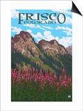 Frisco  Colorado - Fireweed and Mountains