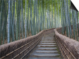 Stairway Through Bamboo Grove Above Adashino Nembutsu-Ji Temple