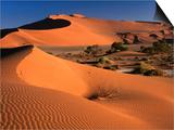 Namib Sand Dunes  Nambia Desert Park  Namib Desert Park  Erongo  Namibia