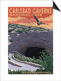Carlsbad Caverns National Park  New Mexico - Natural Entrance